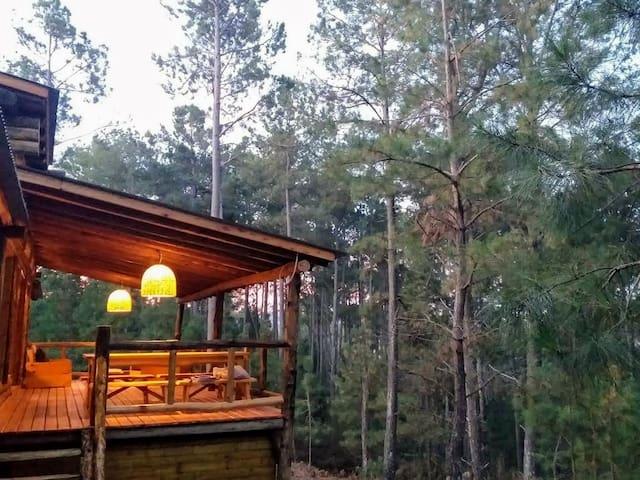La Pausada Increíble cabaña en el bosque