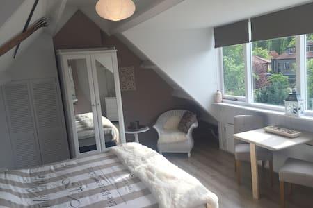 Big Bright & New Room Near Center Of Haarlem - Haarlem