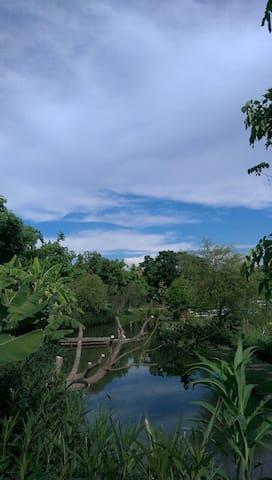第二生態池