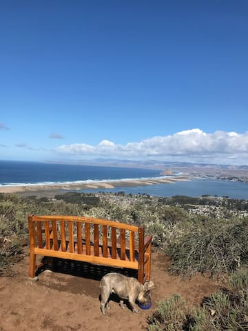 Private Upstairs Bed & Bath in Los Osos