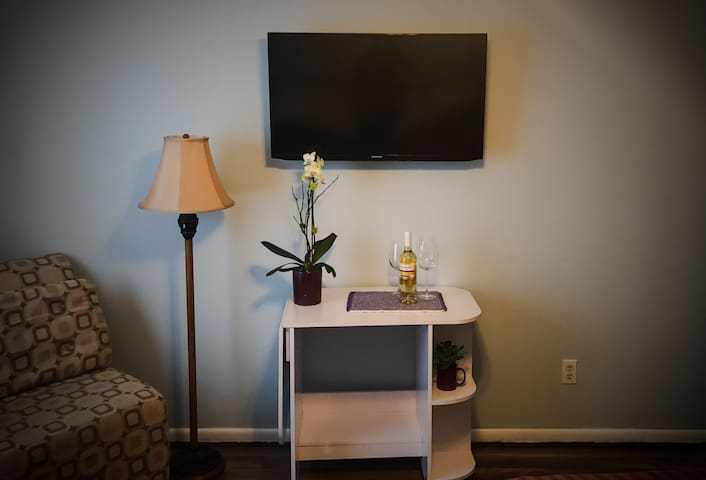 TV in Bedroom with Netflix and Cable