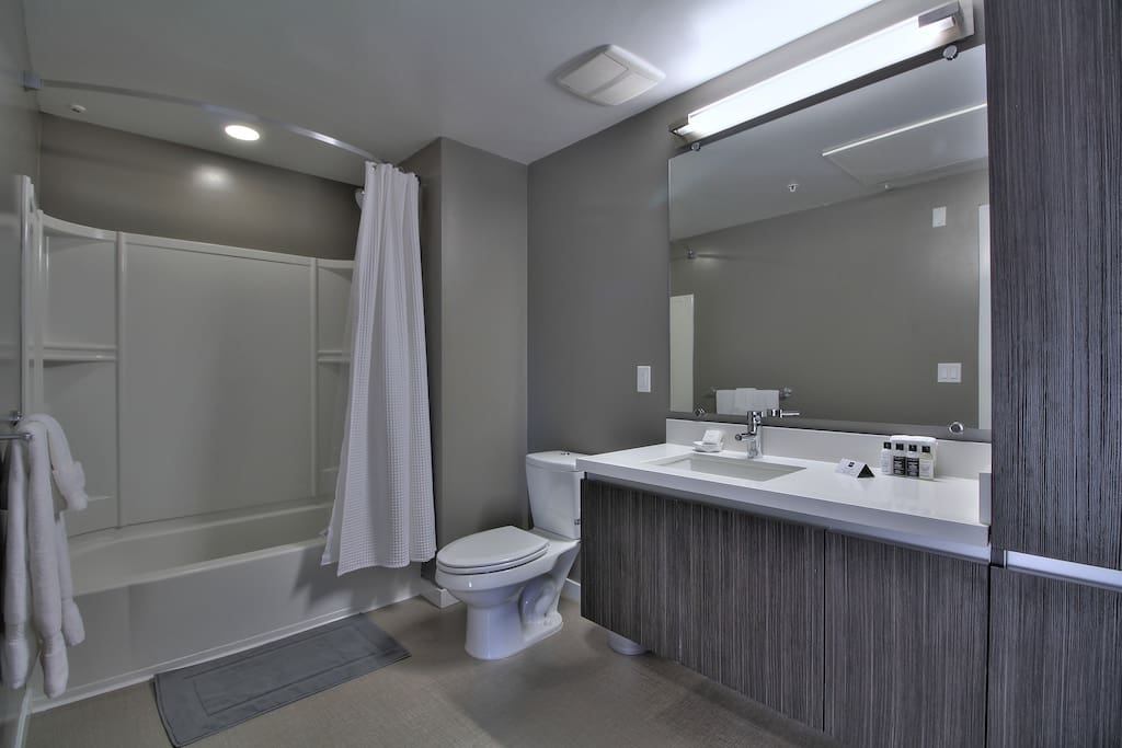 Master Bathroom with Rain Shower + Tub