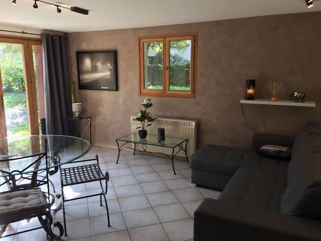 Appt au calme 300m lac accès jardin - Duingt - Wohnung