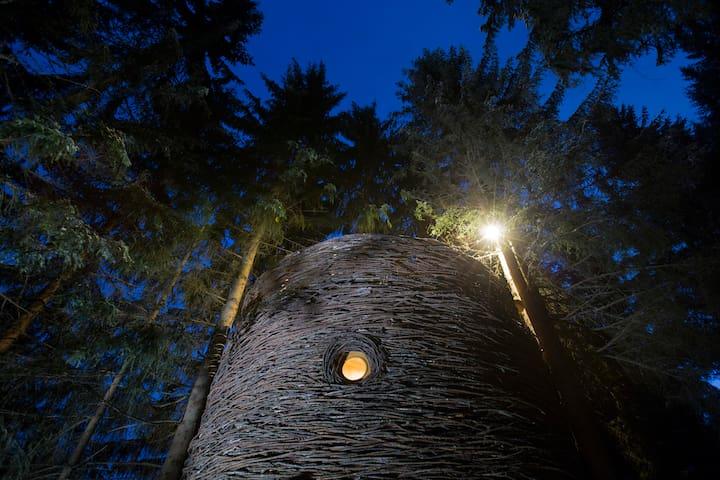 Cabane Nid un soir de pleine lune.