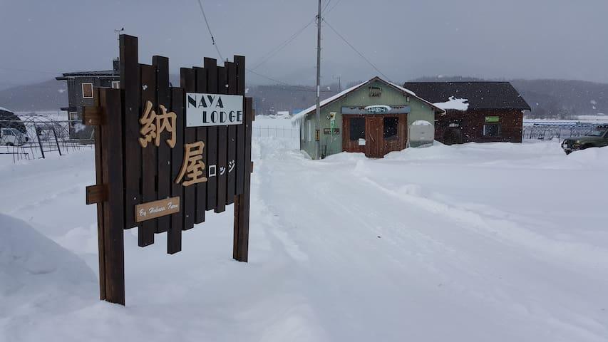 NAYA LODGE -Room Tokachi, 4 beds unit 3500JPY/head - Furano - Slaapzaal