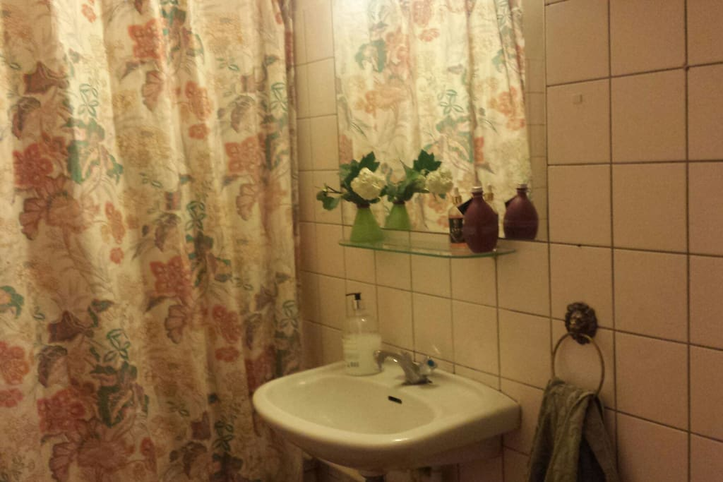 the shared bathroom. shower behind the curtains