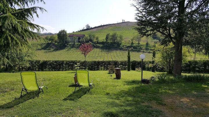 B&B Ant'la Vigna Monferrato Vnyd.