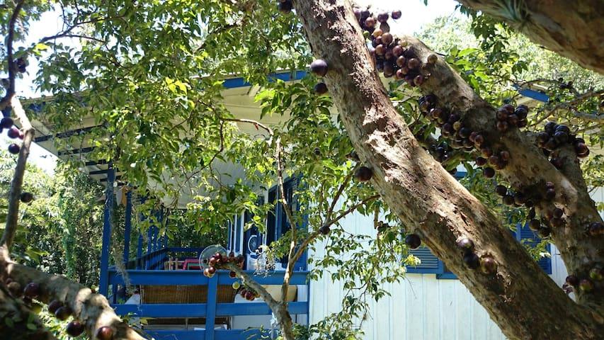 Jabuticaba: varanda como essa só existe aqui