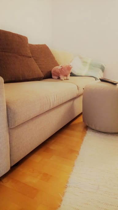 comfortable sofa that turns into bed