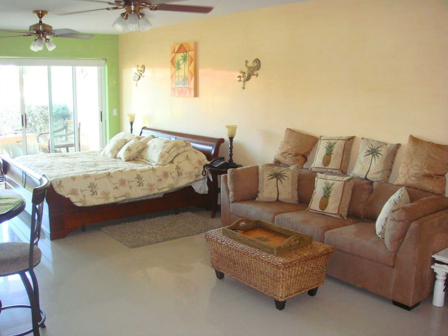 Queen-size sofa-bed for extra comfort or extra guests!