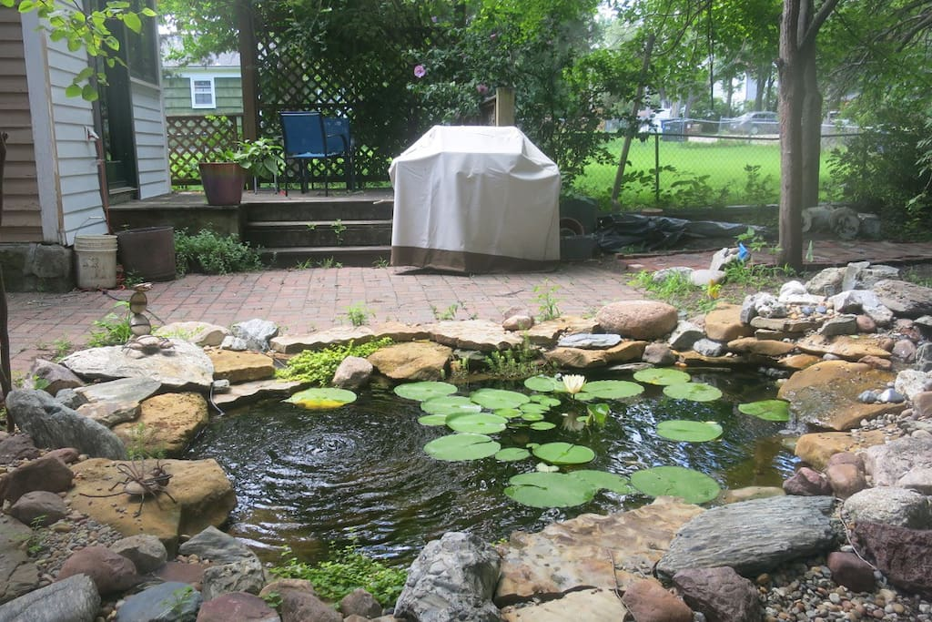 Backyard Fishpond and deck/ gas grille looking south