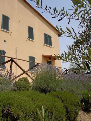 Casa in collina vicino Todi (Pg) - Piedicolle - Wohnung