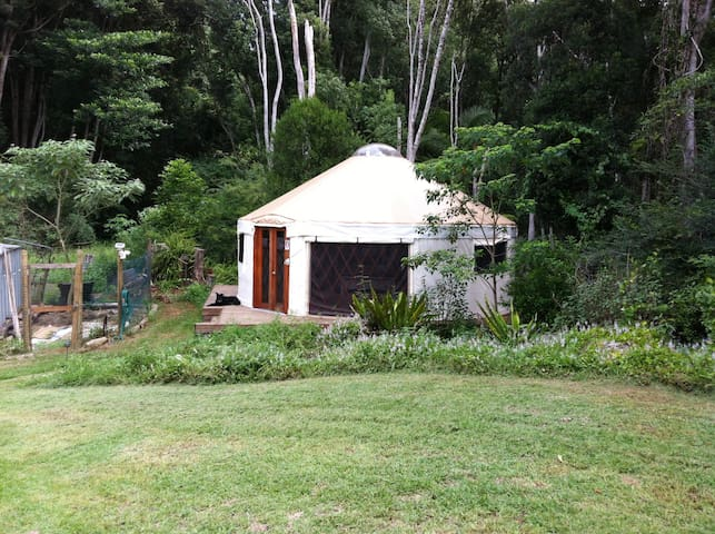 Divine Yurt - Rainforest Retreat, Byron Hinterland - Goonengerry - Yurt