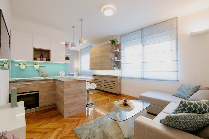 City center luxurious apartment