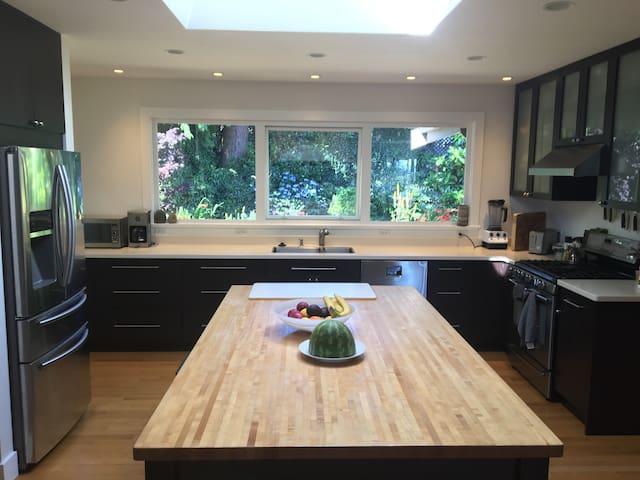 kitchen and sky lit island