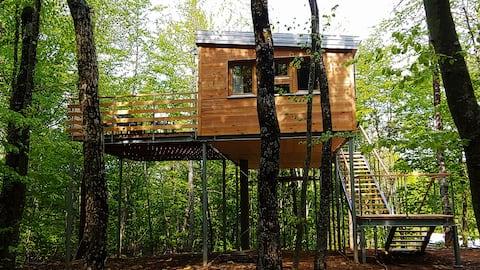 Casa na árvore Lika 2