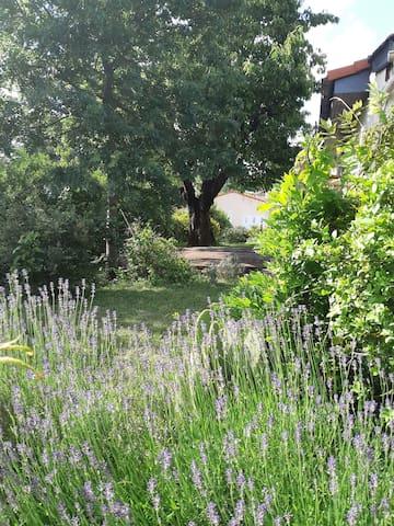 ~Il était une Maison Calme~ Jardin proche Toulouse