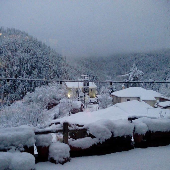 Elati in the winter