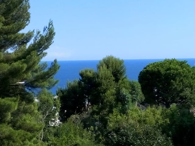 NICE -exceptionnel- agréable studio sud - vue mer