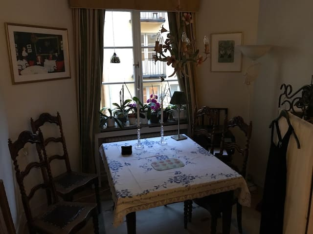 Extremely central apartment, 500 m fr Stockhom C!