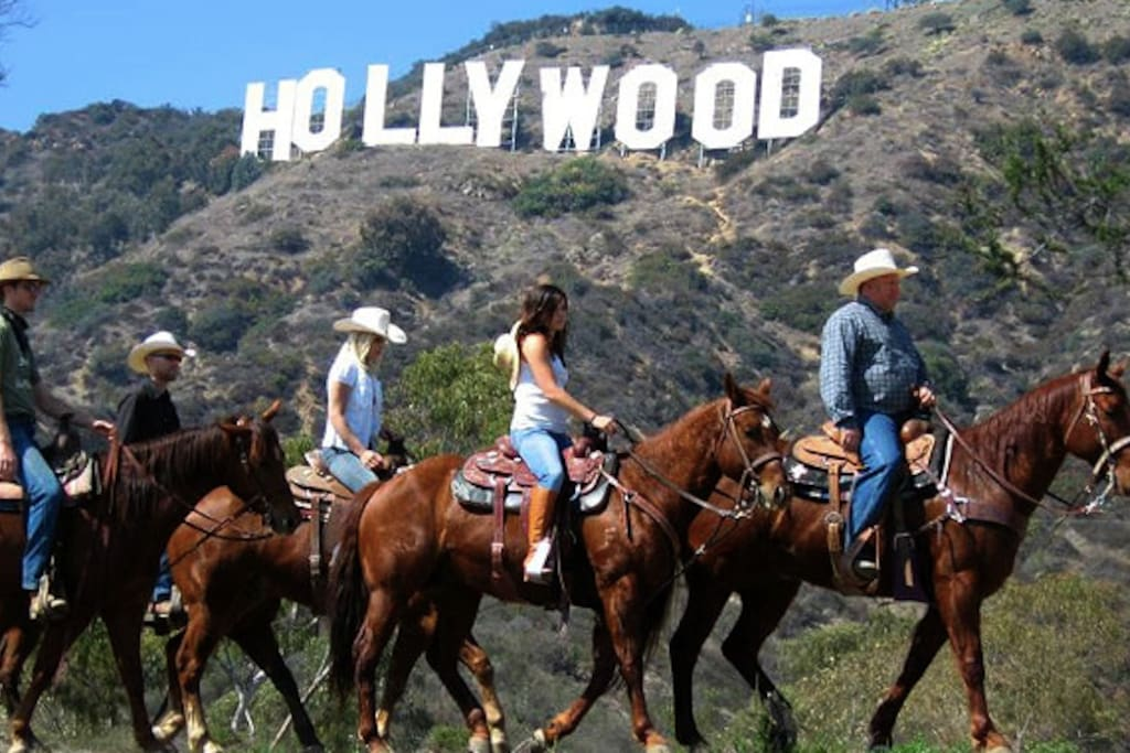 Lots of Nature in the city.  Hike or Ride to see the famous Hollywood Sign.