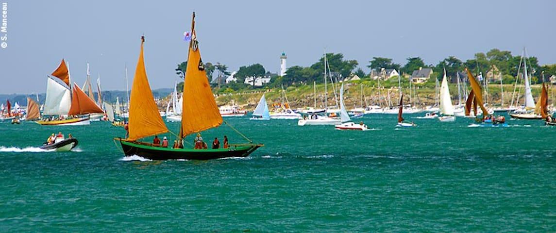 Golfe du Morbihan à 500m