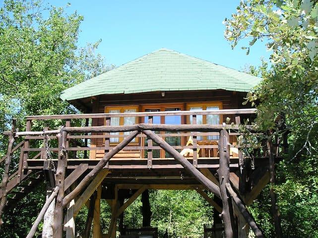 Maison dans les arbres avec piscine