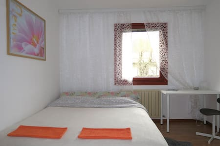 Budget Homestay. 2nd Room - Idrsko - Bed & Breakfast