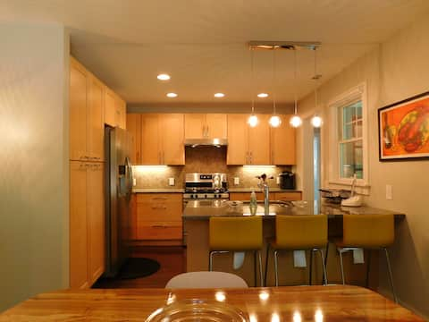 Contemporary Cottage - walk to Downtown Brevard!