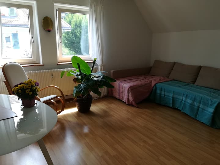 Quiet and spacious room; 2 min. from Aare-Eichholz