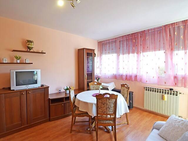 Apartment TEA-ZADAR - ザダル - アパート