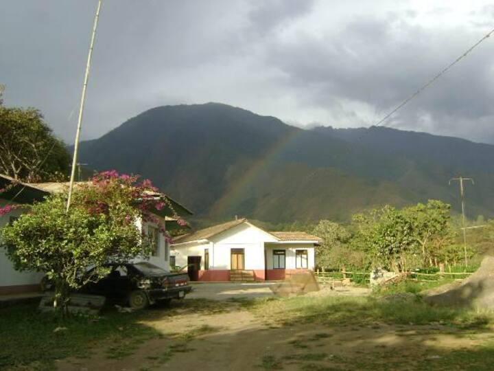 Tea House Cusco.