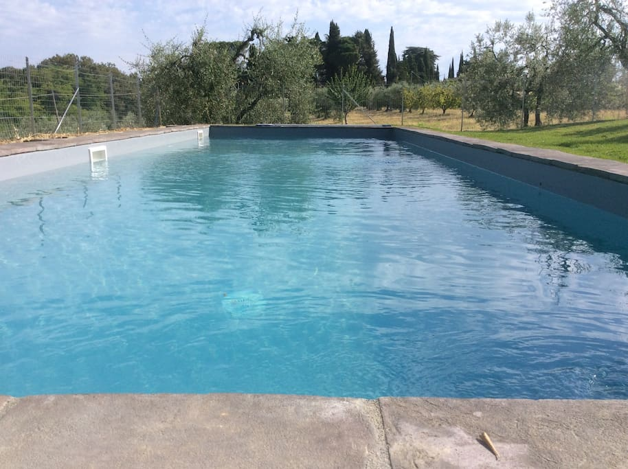 new pool with salt system