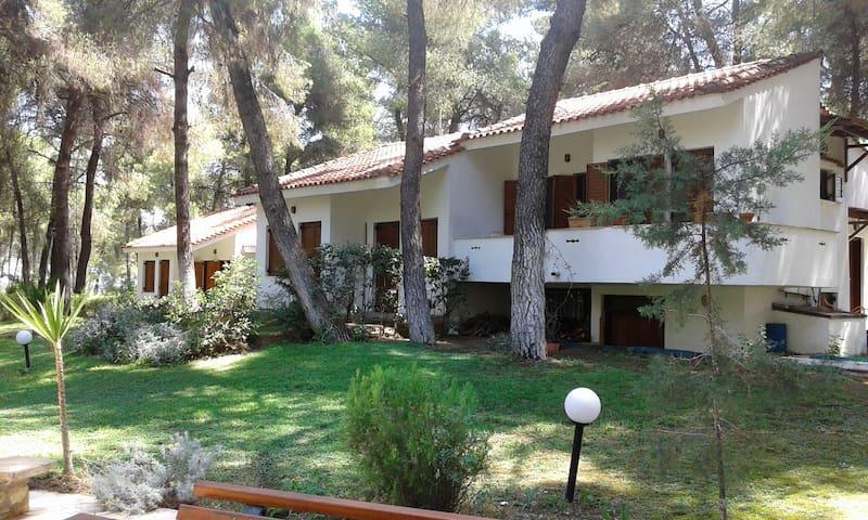 Villa Anty
