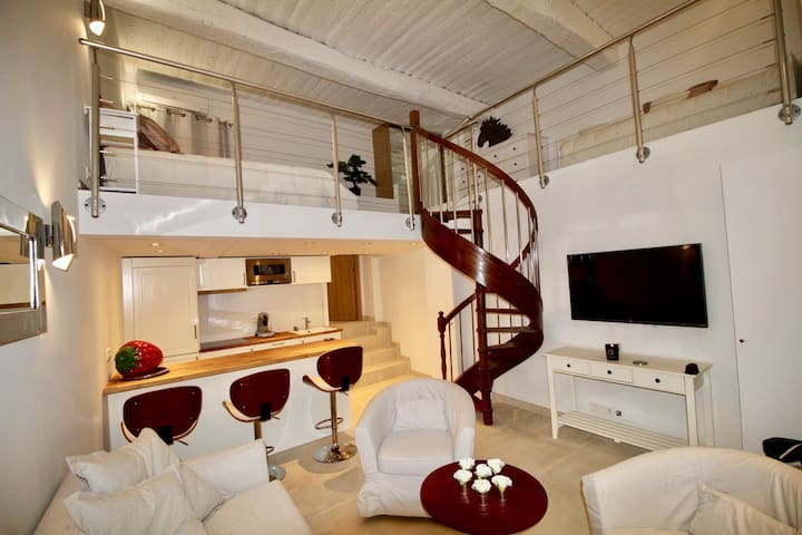NEW 2017 ! Loft old town Antibes - Antibes - Apartament