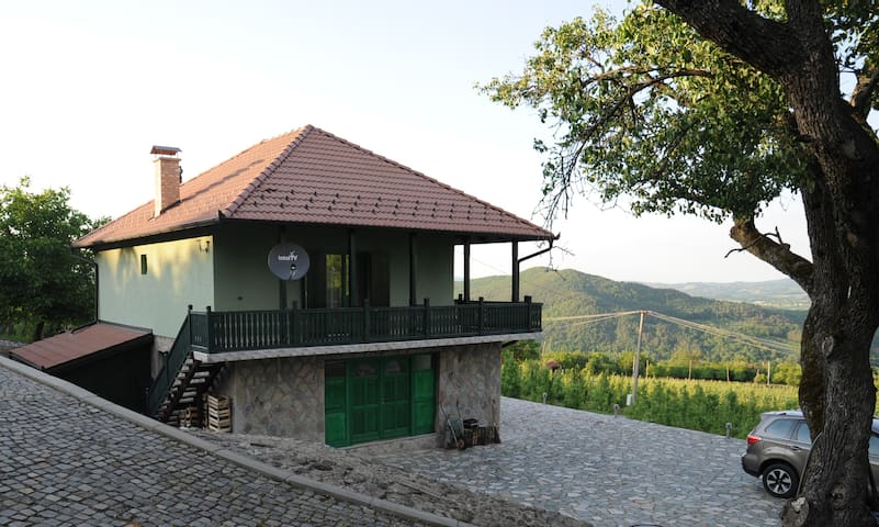 Pajsijevic Home with a View