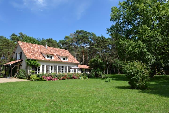 Le bois des Roches - Roches-Prémarie-Andillé - Huis