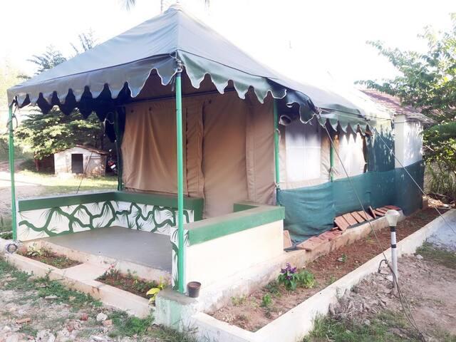 TT Ibbani Tent