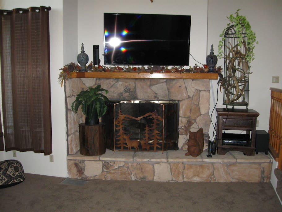 Fireplace,Hearth,Fern,Art,Carpet