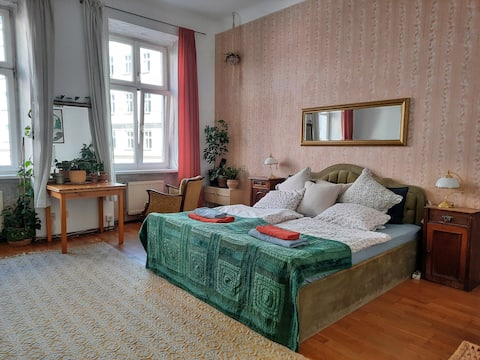spacious room in artsy flat close to city-center