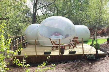 La bulle fleurie Au Pays des Bulles - Montendre