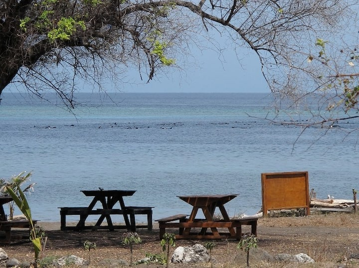 Atauro Island backpackers and travellers place