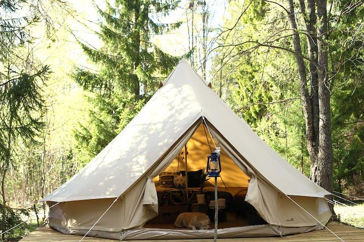 Soul Camp комфортный эко-кемпинг на берегу озера