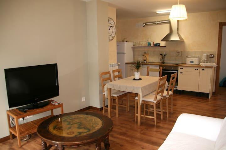 Apartamento con encanto,  mucha luz y tranquilidad - Isaba