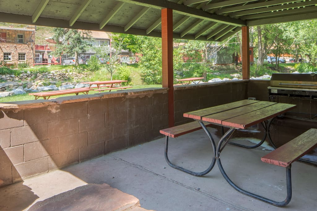 Outdoor pavilion and professional grill