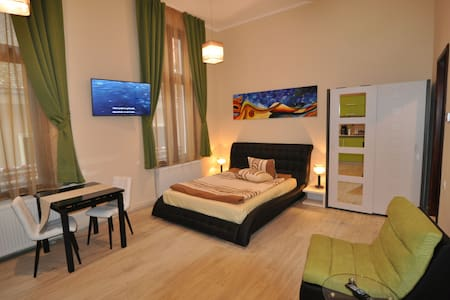 Select City Center Apartments - Evergreen Studio - Brasov