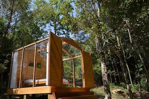 Vale das Furnas - Cabana de Vidro na Floresta