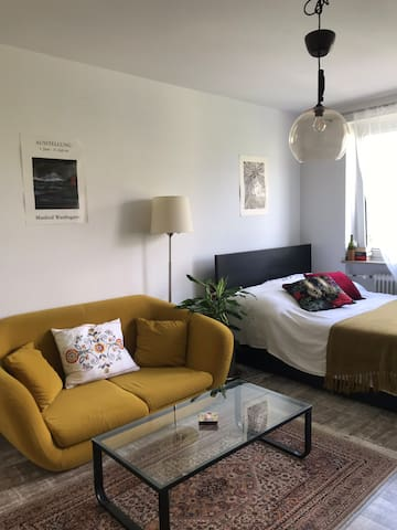 Cozy apartment near Center and Olympic Park