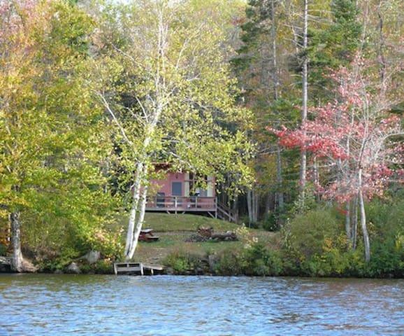 Cozy cabin 150' from pristine Lake Armington