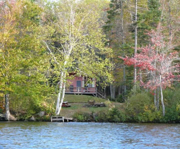 Cozy cabin 150' from pristine Lake Armington